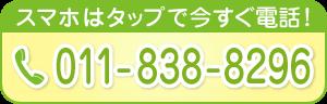 011-838-8296